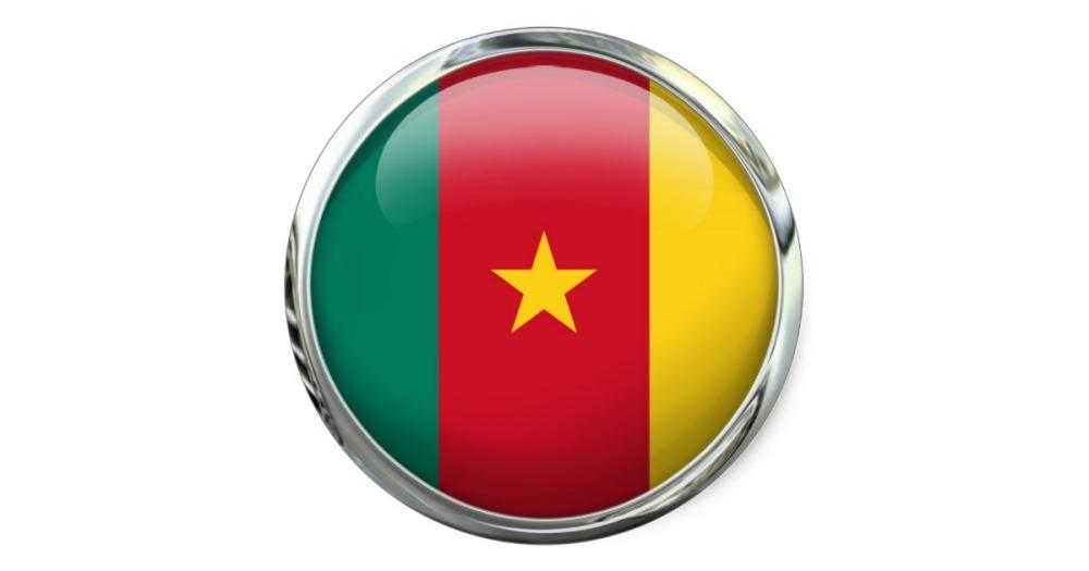 drapeau cameroun