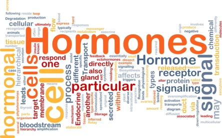 Hormones du massage