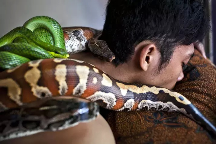 snake massage 02