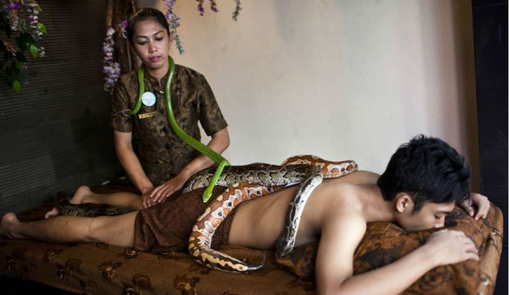 snake massage - 01