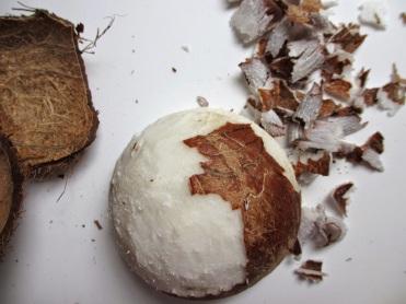 DIY faire sa propre huile de coco - râper la chair de noix de coco fraiche